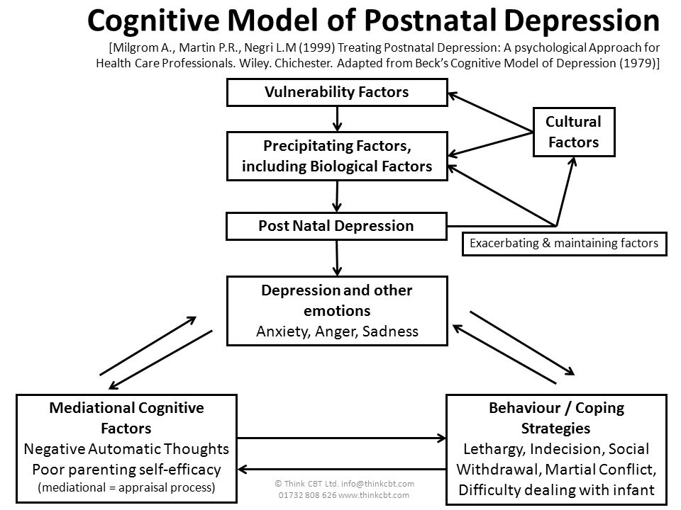 Cognitive Model of Postnatal Depression [Milgrom A. , Martin P. R